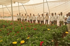 farmers training to polyhouse