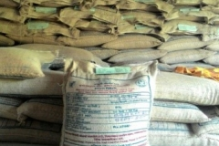 Seed Processing Unit 2